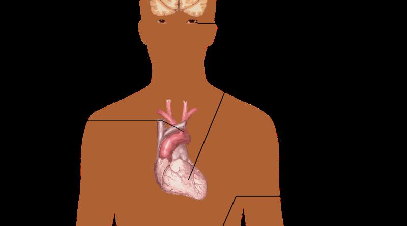 high blood pressure dangers